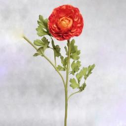 RP Ranunkel orange l= 54 cm