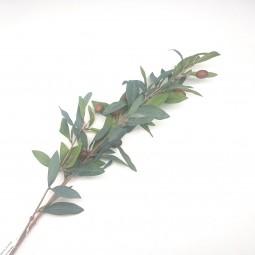RP Olivenast lang l= 82 cm