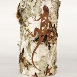 Salamander kletternd ROST