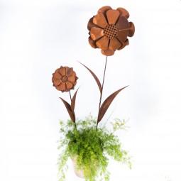 Sonnenblume z. Stecken mittel