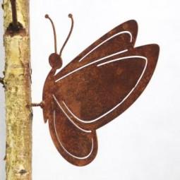 Schmetterling gross mit Dorn
