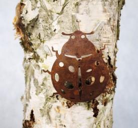 Käfer mit Dorn ROST