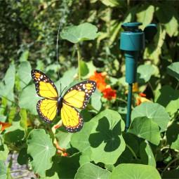 RP Schmetterlinge nur Solar 6 Farben sort
