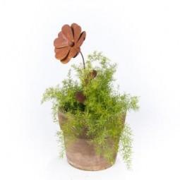 Blume mittel d= 15, l= 45 cm